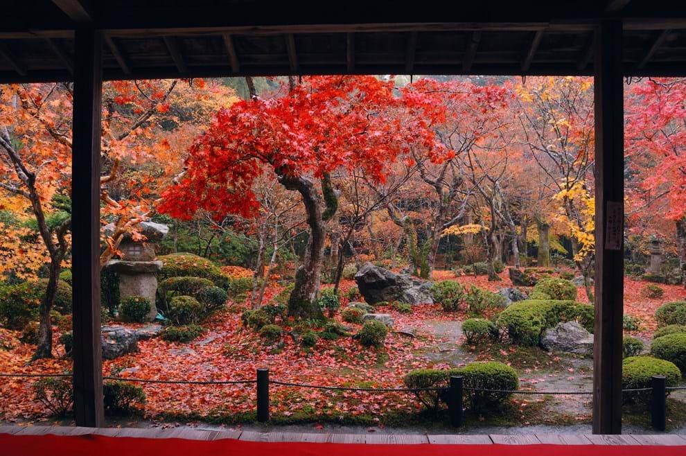 Resa textil i japan (japan) – världens resor